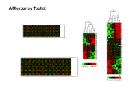 A Microarray Profiling Toolkit PPT Slide